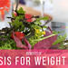 Ketosis for Weight Loss