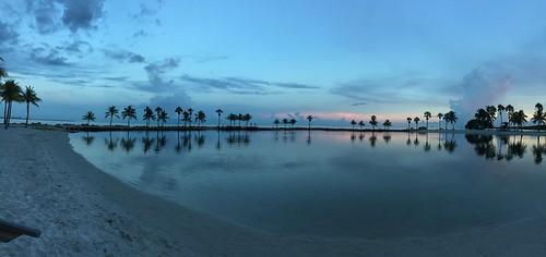 Matheson Hammock Park, Coral Gables FL