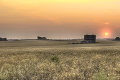 Serenity (Laurie4593) Tags: canadianprairies rural oldbarn field grain crop wideangle peaceful sunset pink harvest autumn canonrebelt7i canon golden country sky open