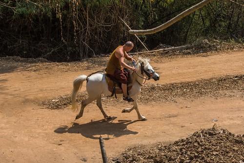 mae fah luang - thailande 28
