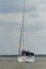 2017-07-31_Keith_Levit-Sailing_Day2103 (2017 Canada Games // Jeux du Canada 2017) Tags: canadasummergames gimli gimliyachtclub interlake keithlevitphotography manitobs sailing sailingdoublehanded29er winnipeg cgsailing 2017canadasummergames