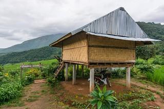 ban pa pong pieng - thailande 14