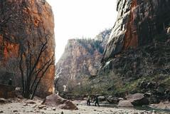 Down The Canyon (Fajar Pangestu) Tags: leica leicadlux109 zion nature nationalgeographic nationalpark ngc utah america usa park valley canyon river hike hiking beautiful travel trip