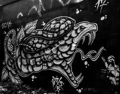 Fangs (Steve Taylor (Photography)) Tags: snake fangs dabs machinegun noose goak graffiti mural streetart monochrome blackandwhite monotone woman lady uk gb england unitedkingdom greatbritain london leaves