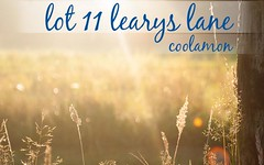 Lot 11 Learys Lane, Coolamon NSW