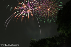 _IMG5949.jpg (y.takahashi84) Tags: hanabi fireworks 花火 さいたま urawa 浦和 東浦和 saitama 日本の夏 summer japan