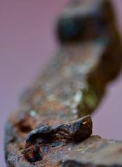 Lucky Rusty?? (Kreative Capture) Tags: rust macromondays macromonday metal iron horseshoe nail square head patina hmm texas nikkor nikon d7100 texture lucky rusty macro dof september