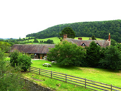 27vii2017 Stokesay 19 (garethedwards36) Tags: stokesay castle shropshire uk lumix grass green trees building architecture