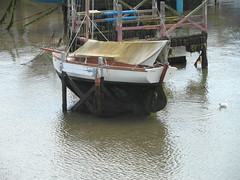 Leona At Low Tide (Glass Horse 2017) Tags: seaweed rope awning staves sea leona lowtide marina ship boat scarborough nyorks