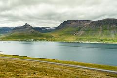 Iceland (webeagle12) Tags: iceland nikon d7200 europe landscape vegetation nature mountain earth planet road route west 61 fjord westfjords súðavík sudavik town