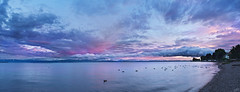 Stream of Clouds at Sunset (johaennesy) Tags: bodensee clouds lakeconstance friedrichshafen panorama k1 petaxian microsoftice gimp rawtherapee lake wide