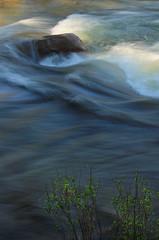 2017_06_22_0616-PS (DA Edwards) Tags: wrights lake creek lyons stream eldorado national forest spring northern california norcal da edwards photography 2017 water color light