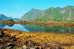 wonderful world and landscape (atsjebosma) Tags: bergen kleuren colours bluesky landschap steine lofoten norway noorwegen atsjebosma july juli 2017 coth5