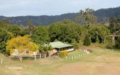 99 Lynches Creek Road, Wiangaree, Kyogle NSW