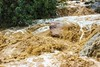 14370706-جبال سلا والعبادل محافظة العارضة-13 (عيسى النخيفي) Tags: جازان سلا العبادل العارضة مناضر كانون تصوير عيسى النخيفي امطار غيوم