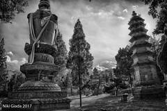 Shaolin Temple - Pagodas HDR BW