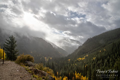 Fall colors on Guanella Pass