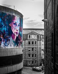 wall art in aberdeen (ChicqueeCat) Tags: nikon d3300 40mm building street