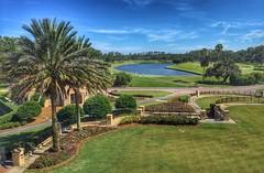 TPC golf view