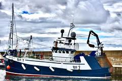 BF7 Tranquility - Macduff Harbour Scotland 6/9/17 (DanoAberdeen) Tags: bf7tranquility macduff danoaberdeen danophotography candid amateur banff scottishhighlands recent 2017 nikon nikkor nikond750 trawlers trawler harbour seaport scallops cod haddock fish fishing fishingboat clouds northsea water autumn summer winter spring ecosse escocia scotia scotland seafarers aberdeenshire cumulus macduffharbour tugboat geotagged dano quay dock starboard hull fishingvessel bonnyscotland gb greatbritain unitedkingdom shipspotting shipspotters nationaltrustforscotland scottishhistory scenery landscape serene peaceful tranquil walk landmark macduffscotland macduffshipbuilders uk scottish british
