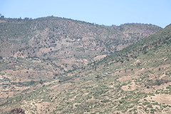 Countryside between Dire Dawa and Harar