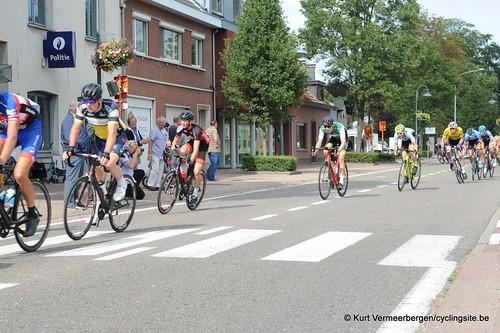Omloop Vlaamse gewesten (393)