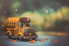 Back to school (Ro Cafe) Tags: autumn bus stilllife toy fall miniature nikkormicro105f28 nikond600 rain drops bokeh leaves outdoors