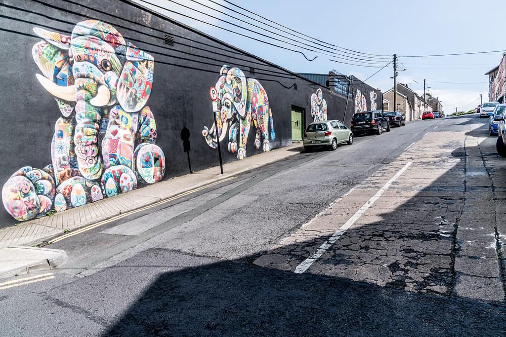 WATERFORD WALLS [AN ANNUAL INTERNATIONAL STREET ART FESTIVAL]-132036