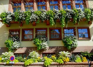 façade d'une mairie bien fleurie !