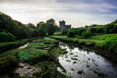 Tintern Abbey, Saltmills, Wexford (ronamkelly) Tags: abbey historical history ruins landscape scenic scenery sky green water waterscape depth ireland wexford moss marsh river trees sonya5000 sonyilce5000