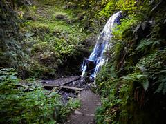 Multnomah-Falls-Columbia-Gorge-DSCN3306