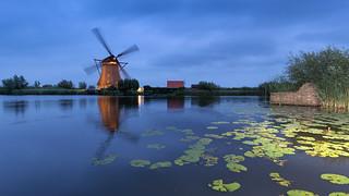 Windmills in Floodlight 2017