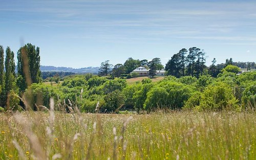 Lot 137, Throsby Views, Moss Vale NSW