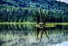 X marks the spot (Keylight1) Tags: fujifilm keylight mjk xt1 lake treesisland reflextion