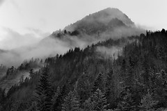 Low Clouds Hanging Around the Ridges of Mount Ross (North Cascades National Park Complex) (thor_mark ) Tags: anseladamslookfromcapturenx2 azimuth315 blackwhite canvas capturenx2edited cascaderange clouds cloudsabove cloudsabovetrees cloudsacrossvalley cloudsaroundmountainpeaks cloudsaroundmountains cloudsinvalley cloudy colorefexpro day7 evergreentrees evergreens gorgeoverlooktrail hiddeninclouds hillsideoftrees ideasigotfromothers landscape lightdrizzle lookingnw lowclouds mountross mountainpeak mountains mountainsindistance mountainsoffindistance mountainside nature nikond800e northcascades northcascadeshighway northcascadesnationalparkcomplex northcascadesnationalparkservicecomplex northcascadesscenichighway outside overcast overcastwithclouds pacificranges picketrange portfolio project365 rainy rainyday ridge ridges rollinghillsides rosslakenationalrecreationarea skagitrange trees triptonorthcascadesandwashington wastateroute20 rosslakenationalrecreationar washington unitedstates