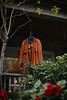 lonely coat (adrian raymer) Tags: lonely coat orange suede dark mysterious autumn porch toronto red flowers outdoor greenery canon 5d 50mm adrian raymer photography