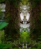 """So, this is the crystal ballroom"" (evakongshavn) Tags: 7dwf fauna squirrel garden animal wildanimals animals creative created create fineartphotography artistic eventyr fairytale enchantedforest"