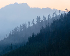 Words Are Never Good Enough (John Westrock) Tags: trees wildfiresmoke nature landscape sunrise morning haze washington pacificnorthwest snoqualmiepass canoneos5dmarkiii canon135mmf2lusm longexposure