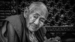 Monk I (#Weybridge Photographer) Tags: canon slr dslr eos 5d mk ii nepal kathmandu budhist monk boudha stupa boudhanath mkii asia people portrait street