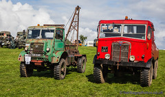 IMG_4384_Bedfordshire Steam & Country Fayre 2017_0399 (GRAHAM CHRIMES) Tags: bedfordshire bedford bedfordshirerally bseps bsepsrally 2017 oldwarden shuttleworth steamrally steam steamfair showground steamengine show steamenginerally transport traction tractionengine tractionenginerally classic countryshow country vintage vehicle vehicles vintagevehiclerally vintageshow heritage historic wwwheritagephotoscouk rally restoration engine engineering bedfordshiresteamenginepreservationsociety fair bedfordshiresteamcountryfair2017 ql timber crane 726ear aec matador timbertractor 1946 77drt