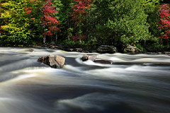 Oxtongue River (ashockenberry) Tags: river flow white water nature naturephotography muskoka ontario ontarionature