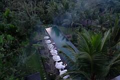 Komaneka at Bisma (Sunyoung善暎) Tags: komaneka ubud bali indonesia resort poolvilla familytrip vacation holiday travel summer nature