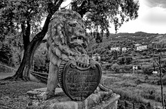 Ferragosto da leoni (Maurizio Longinotti) Tags: ferragosto ferragostodaleoni leone lion santamariadelcampo rapallo biancoenero blackandwhite liguria italia italy festapatronale santamariaassunta assunta chiesa church leccio tree colline hills