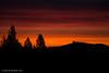 Sunrise (jimgspokane) Tags: sunrises forests trees excapture otw