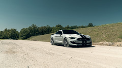 GT350 7 (Arlen Liverman) Tags: exotic maryland automotivephotographer automotivephotography aml amlphotographscom car vehicle sports sony a7 a7rii gt350 shelby