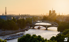 Golden hour (A.G. Photographe) Tags: anto antoxiii xiii ag agphotographe paris parisien parisian france french français europe capitale d810 nikon nikkor 70200vrii toureiffel eiffeltower notredame cathédrale seine bateauxmouches institutdumondearabe ladéfense goldenhour