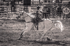 Fearless (Tracey Rennie - away) Tags: horse peeweebarrelracing rider cochranelabourdayrodeo monochrome 52weekchallenge bw alberta western girl rodeo alsohatless cochrane