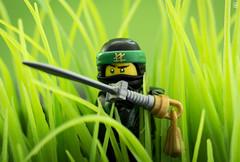 Ninja in the reeds (Jezbags) Tags: lego legos toy toys canon60d canon 60d 100mm closeup upclose macro macrophotography macrodreams macrolego ninjago ninja reeds swords