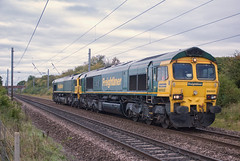 Freightliner Class 66 66502 'Basford Hall Centenary 2001' & 66515 (Barry Duffin) Tags: rail railway retford railscape railroad train trains travel transport tracks freight freightliner lightengine class66 shed sheds 66502 66515 leeds whitemoor color colors colours colour clouds cloud diesel loco locomotive dslr d3000 nik nikon photography photo photoshop yellow green brown grey black lines ecml europe england uk ukrail britain gamston nottinghamshire