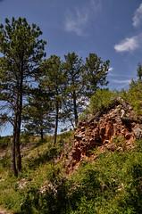 _DSC1441 (cklingenberg) Tags: south dakota windcave blackhills custer state park